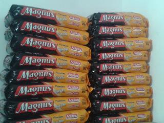 Magnus Todo Dia